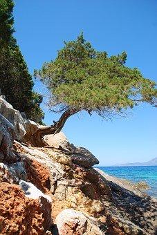 Samos, begeleide reizen
