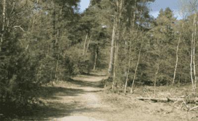 Vakantie met zorg, rolstoelvakantie naar Lorkenbos