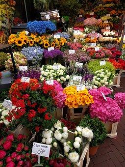 Bloemenmarkt Amsterdam, rolstoelvakantie