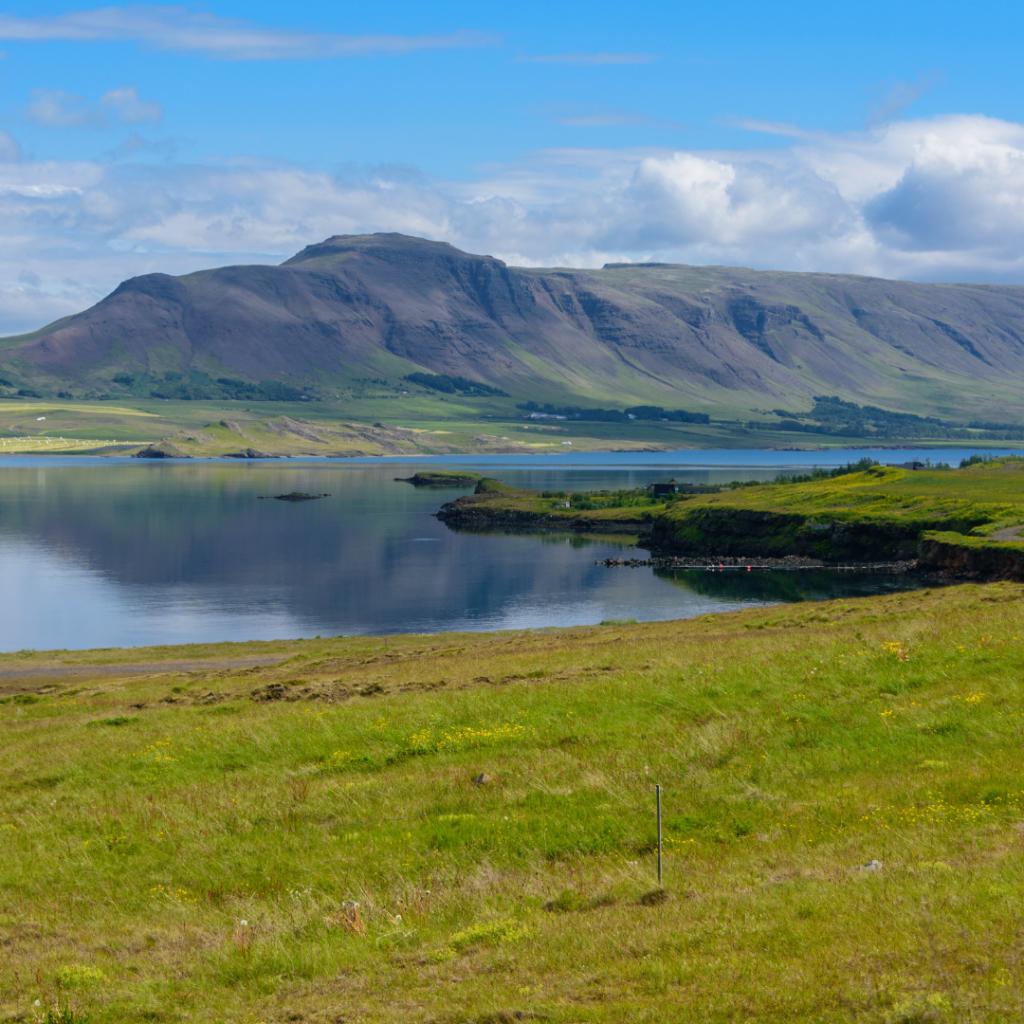 IJsland cruise met begeleiding