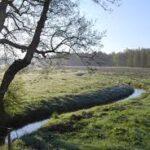 Aangepaste accommodatie Drenthe