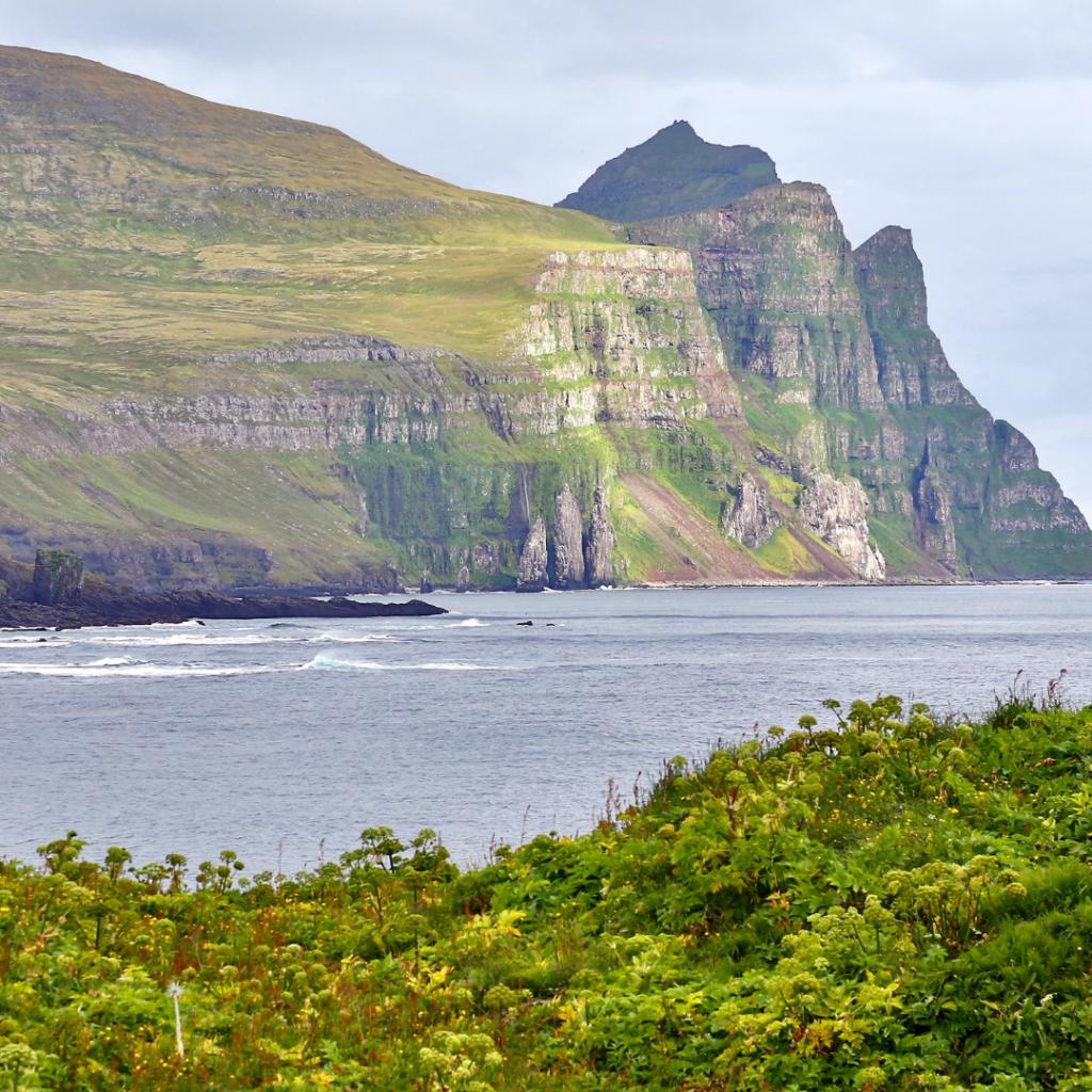IJsland cruise met zorg en begeleiding