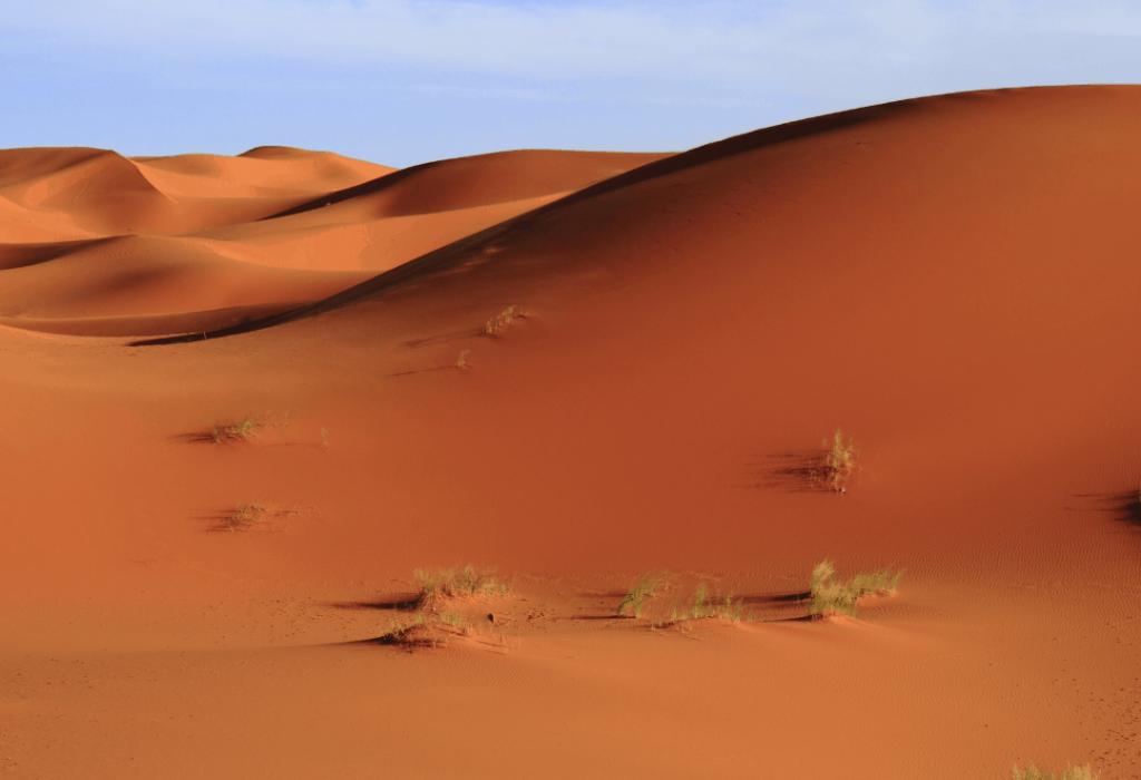 De omgeving van Marrakech, rolstoelvakantie
