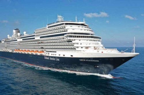 Cruise met zorg, Cruise met begeleiding